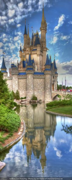 Walt Disney World, Orlando, FL - Magic Kingdom at Walt Disney World by Jon Fiedler