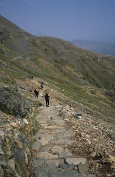 Image detail for -Mount Snowdon is the highest mountain in Wales at 3,560 ft above sea level. It is located in Snowdonia National Park. The mountain is popular with hikers and walkers and there are many different paths to follow including the Pyg Track.