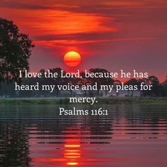 I love the LORD, because he has heard my voice and my pleas for mercy. Bible Verses About Faith, Bible Love, Bible Encouragement, Prayer Scriptures, Faith Prayer, Scripture Verses, Bible Verses Quotes, I Love The Lord, Christian Verses