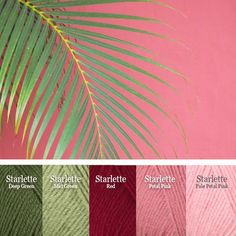 Find your flock with these curated Flamingo colors in by Mary Maxim Scheme Color, Color Schemes Colour Palettes, Nature Color Palette, Colour Pallette, Color Trends, Website Color Schemes, Flamingo Color, Yarn Color Combinations, Color Style