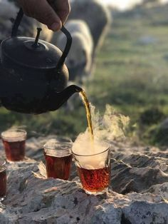 Tea, please - Tea Lovers Corner - Nature Chai, Coffee Time, Tea Time, Glace Fruit, Photo Hacks, Turkish Tea, Cuppa Tea, Tips & Tricks, Just Relax