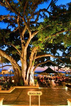 Moana Surfrider, A Westin Resort & Spa Honolulu, Hawaii