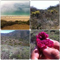 A day of hiking in Malibu #Malibu #scenic #hike