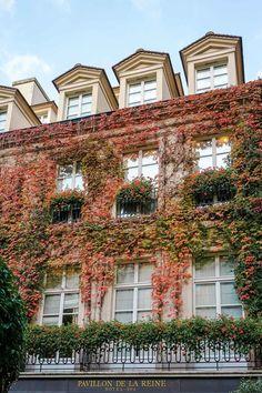 Where to Stay in Paris: Le Pavillon de la Reine