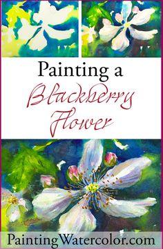 Painting Blackberry Flowers