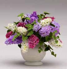 Miniature Lilacs bowl - very pricey, but gorgeous miniature flowers on this website.