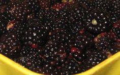 Irish Kitchen Garden - A Connemara Croft: Blackberry Connemara Chutney