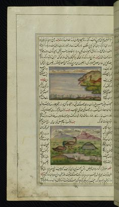 Tīṭawá birds of India, a tortoise, and ducks - The lights of Canopusانوار سهيلى