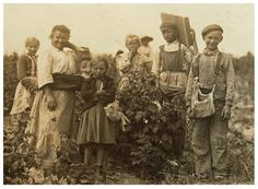 Berry pickers, Maryland, c1909