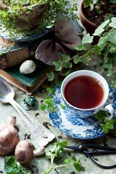 tea + a scene