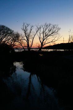 河口の夕日 Sunset of mouth Hamamatsu, Japan, Celestial, Sunset, City, Outdoor, Outdoors, Cities, Sunsets