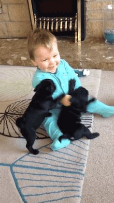 Tastefully Offensive on Tumblr, Video:Pug Puppies Adorably Attack Baby