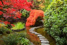 Floating Pathway:  Butchart Gardens, Victoria, British Columbia, Canada