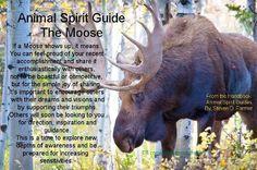 Animal Spirit Guide : The Moose