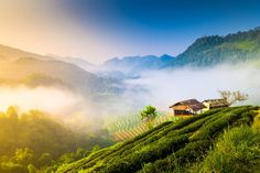 Chiang Mai, Thailand | 8 of the Best Destinations for Winter Sun
