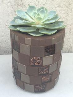 Cachepô com mosaico e suculenta!!