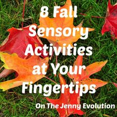 8 Fall Sensory Activities at Your Fingertips | The Jenny Evolution: 8 Fall Sensory Activities at Your Fingertips | The Jenny Evolution