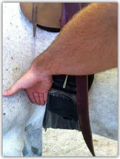 You should be able to place 2-3 fingers between the cinch and the horse's belly. Wrap the remaining end of the cinch strap within the saddle loop. horse riding boots
