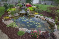 A customer's Tranquility pond built by Living Waterscapes located near Greensboro, NC.