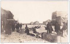 RP: Dog Teams resting , Main Street , THE PAS , Manitoba , Canada , 00-10s Item number: 281888846  - Delcampe.com