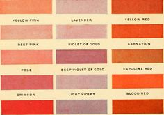 Image from page 31 of Colors and coloring in china painting, 1914 Textures Patterns, Color Patterns, Local Color, Pink Images, Just Peachy, China Painting, Color Stories, Carnations, Red And Pink