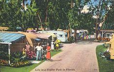 Florida Bay, Florida Fish, Florida Living, Old Florida, Vintage Florida, State Of Florida, Beach Trailer, Mobile Home Parks, Mobile Homes