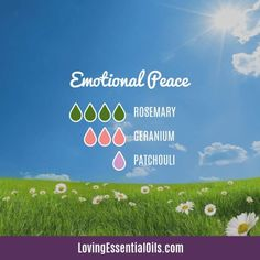 Emotional Peace Diffuser Blend with Rosemary by Loving Essential Oils - Promote peace and emotional wellness with this blend of essential oils!