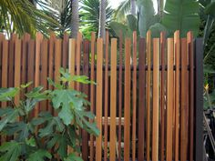 Fences & gates - Landscape design, garden care services and gardening maintenance with Auckland landscaping company Second Nature Landscapers New Zealand. Front Fence, Fence Gate, Landscaping Company, Backyard Landscaping, Garages, Fence Screening, Privacy Screen Outdoor, Natural Fence, Planting Shrubs