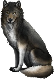 www.wolfplaygame.com Is a beutiful wolf breeding game that in it you mate and Roleplay.