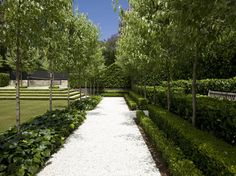 In this contemporary formal garden, shaded by pear trees, simplicity and restraint is used in equal quantities.   Visually this garden is a really exciting space, and in the background there are also the sounds of footsteps crunching on gravel and water bubbling.   The garden entices you towards the lawn, even though it's a higher level so it's axis encourages enticement and along with cross axis provides views deep into the garden.  It is all good for the soul.