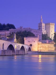 Avignon, France This is where the origin of my last name comes from ! A must go place before I die.