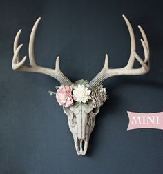 Mini Faux Deer Skull with 3 flowers attached (floral crown look) Flower options are available in pictures. Deer Skull Decor, Deer Head Decor, Painted Deer Skulls, Antler Art, Deer Antler Crafts, Faux Flowers, Sola Flowers, Faux Taxidermy, Taxidermy Decor