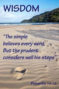 Proverbs 14, Christian Posters, Political Quotes, Bible Verses, Politics, Wisdom, Words, Beach, Outdoor