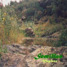 Semillas-Magluss