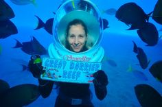 Experiencing the Great Barrier Reef.