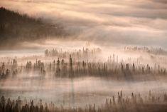 Adobe Stock Contributor Creator Highlight: Dreamlike Views of Finland Captured by Tiina Törmänen | Colossal