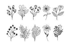 Flower Doodles, Cute Doodles, Doodle Drawings, Doodle Art, Flower Silhouette, Outline Art, Flower Sketches, Floral Drawing, Bullet Journal Art