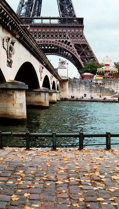 Because who doesn't love Paris.