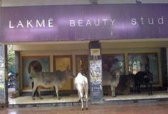 Lakme Beauty Studio   for very one !