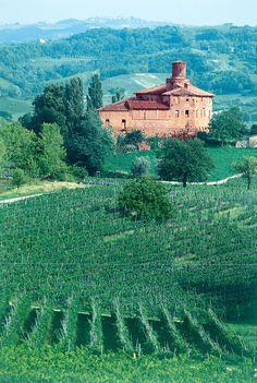 Het kasteel van de Falletti's, de grondleggers van de beroemde Barolo wijnen. Het wijnhuis Marchesi di Barolo werd opgericht in 1895 en is al bijna 120 jaar in handen van de Abonna familie. Meer info over dit prachtige wijnhuis in het Wijnkring Magazine