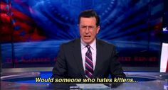 Colbert & Kittens: A Gif We Can Love