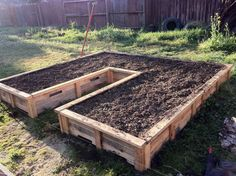 Raised bed gardens from old shipping pallets