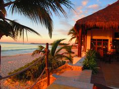 This is actually a place I have recently been - Akumal Beach Resort, Akumal, Mexico (Mexican Riviera)