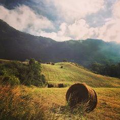 Appennino romagnolo, al confine con la Toscana - Instagram by ravenna2019