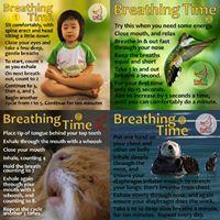 End Trigeminal Neuralgia. This page provides general information about trigeminal neuralgia. Learning To Relax, Trigeminal Neuralgia, Reiki, Breathe, Meditation, Mindfulness, Yoga, Image, Consciousness