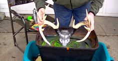 Now this is cool. Learn how to custom dip your own European mount with spray paint!