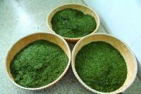 Fresh Longjing Green Tea Leaves