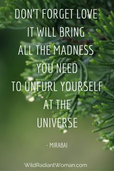 """""""Don't forget love; it will bring all the madness you need to unfurl yourself across the universe."""" - Mirabai   Find more inspiration at www.wildradiantwoman.com Elizabeth Gilbert, Across The Universe, Wisdom Quotes, Great Quotes, You Changed, Don't Forget, Believe, Bring It On, Self"""