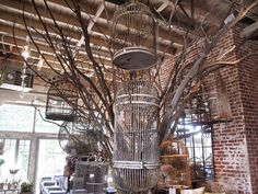 Antique Bird Cage Collection hanging from constructed branches | Rolling Greens Los Angeles