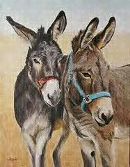 I 'd like to paint some donkeys, this is very good Donkey Drawing, Farm Animals, Cute Animals, Cute Donkey, Farm Art, Equine Art, Miniature Donkey, Wildlife Art, Horse Art